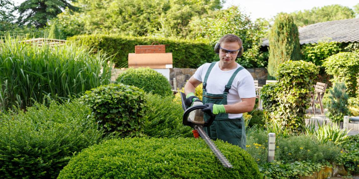 Engager un jardinier paysagiste pour un jardin harmonieux