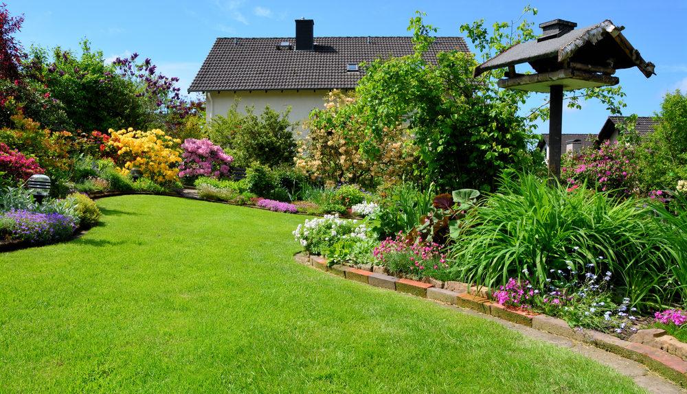Aménagement de jardin : sept conseils pour les débutants