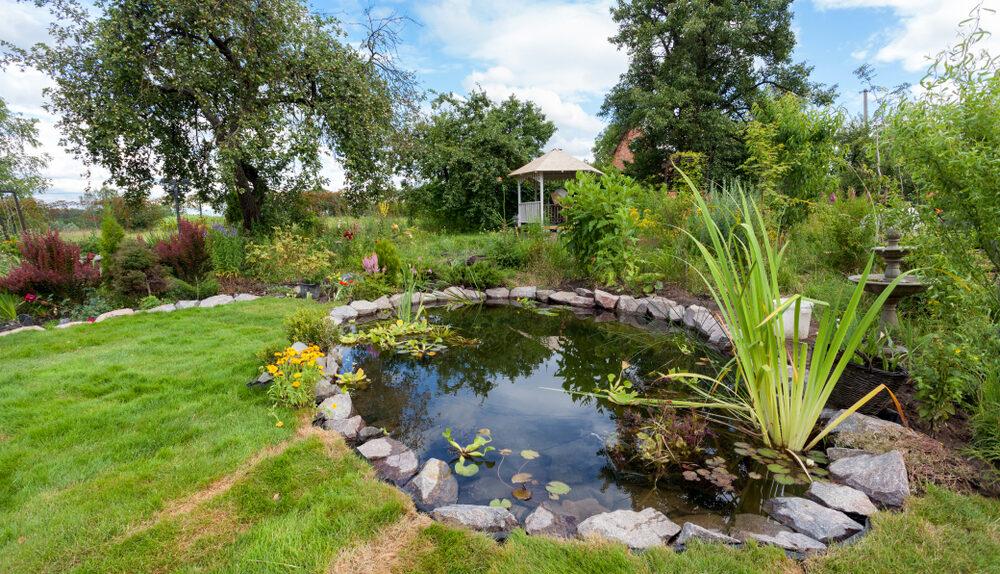 Conseils pour réussir l'aménagement d'un bassin de jardin