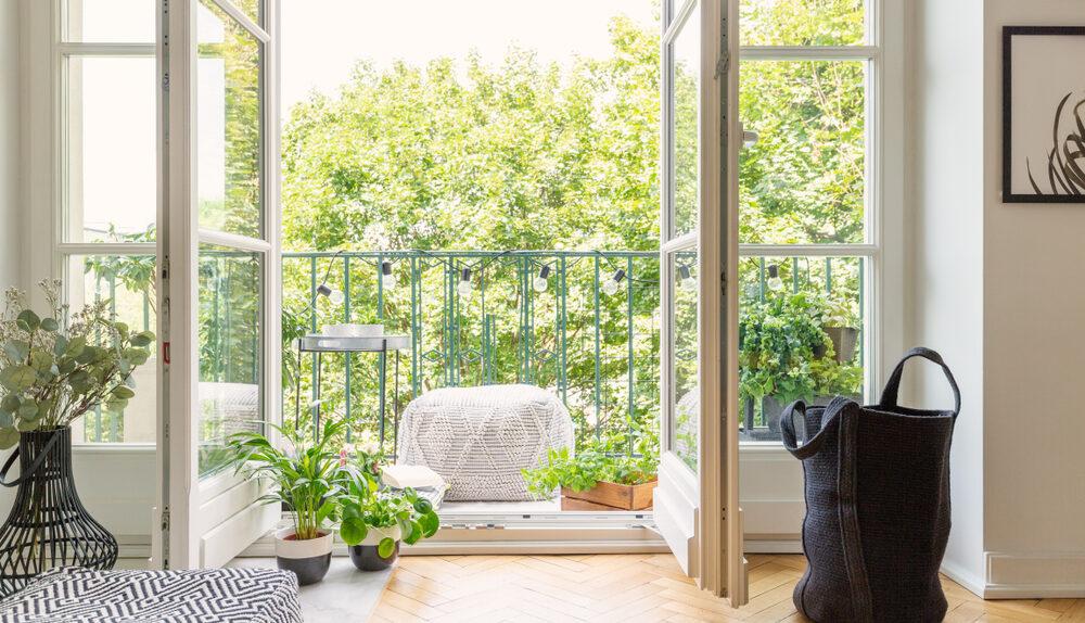 Les 3 espèces de fleurs les plus cultivées sur un balcon